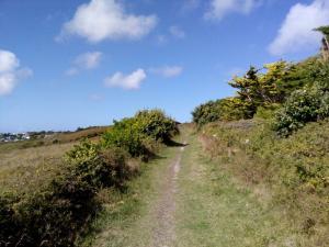 Wanderweg zwischen Hecken